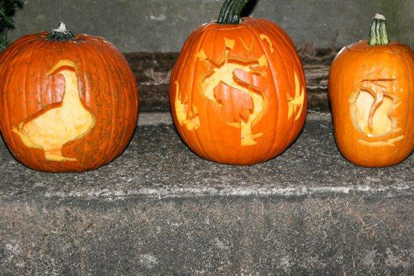 lit_pumpkins-2010-10-25-10-141.jpg
